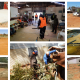Safety in APY Lands Communities